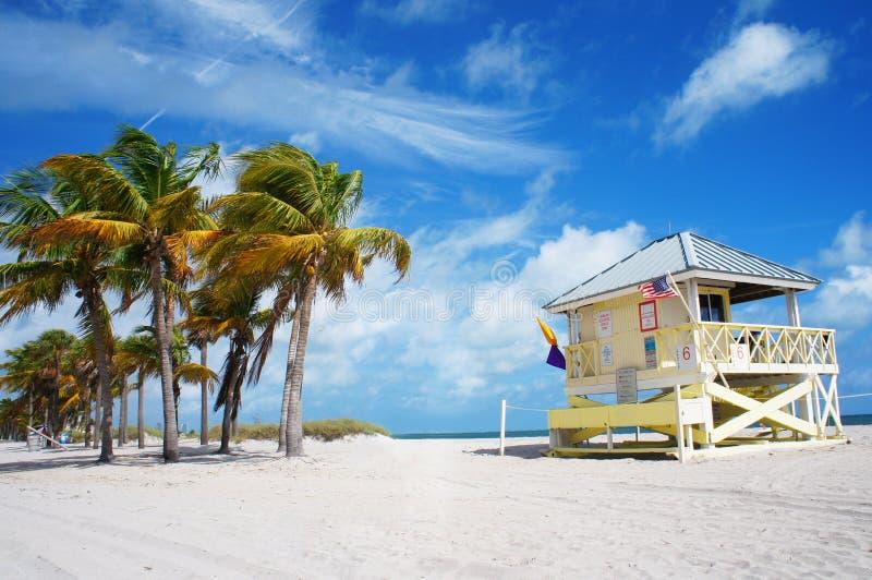 Praia do parque de Crandon de Key Biscayne, Miami fotografia de stock royalty free