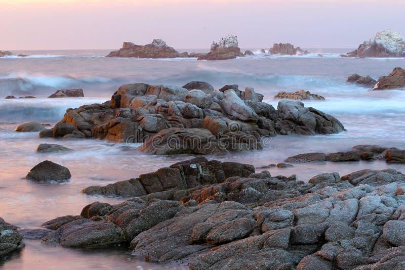 Praia do parque estadual de Asilomar, perto de Monterey, Califórnia, EUA foto de stock royalty free