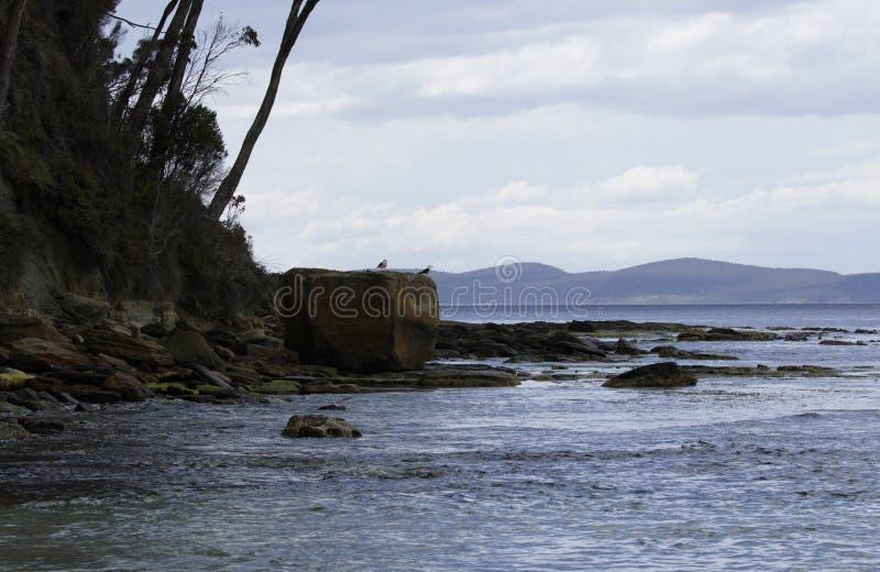 Praia do ponto de carvão na ilha de Bruny em Tasmânia fotografia de stock royalty free