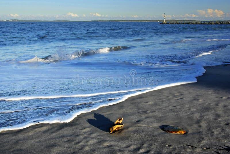 Praia do por do sol da baía da Botânica fotografia de stock