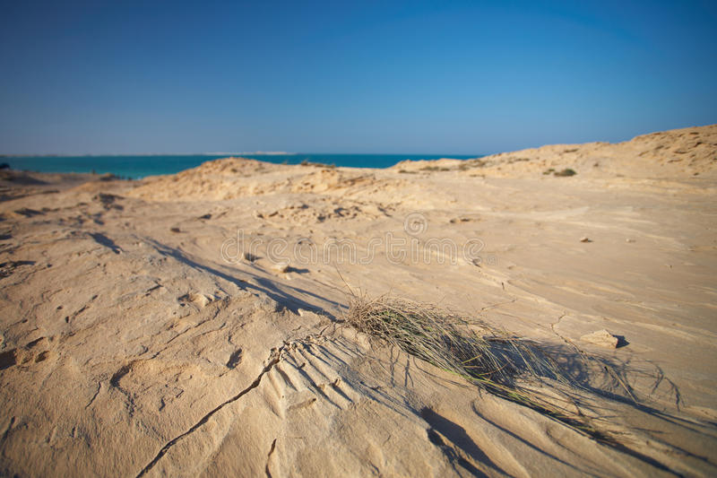 Praia do Sandstone fotografia de stock royalty free