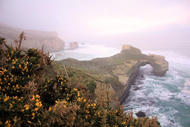 Praia do túnel perto de Dunedin na névoa do amanhecer, ilha sul, Nova Zelândia fotos de stock