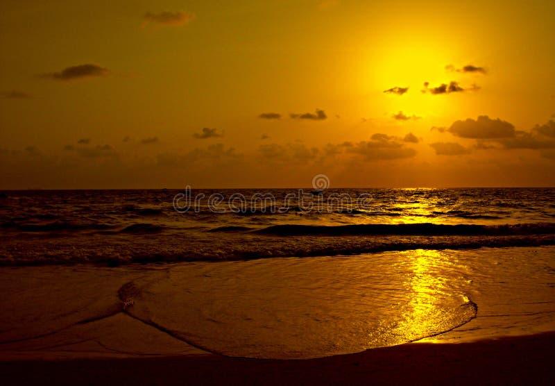 Praia dourada - Goa - India imagem de stock
