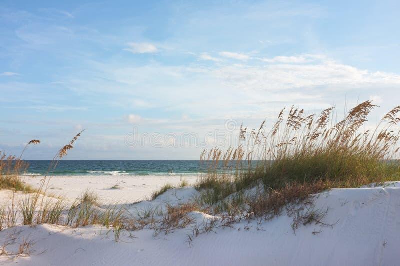 Praia e dunas bonitas no por do sol fotografia de stock