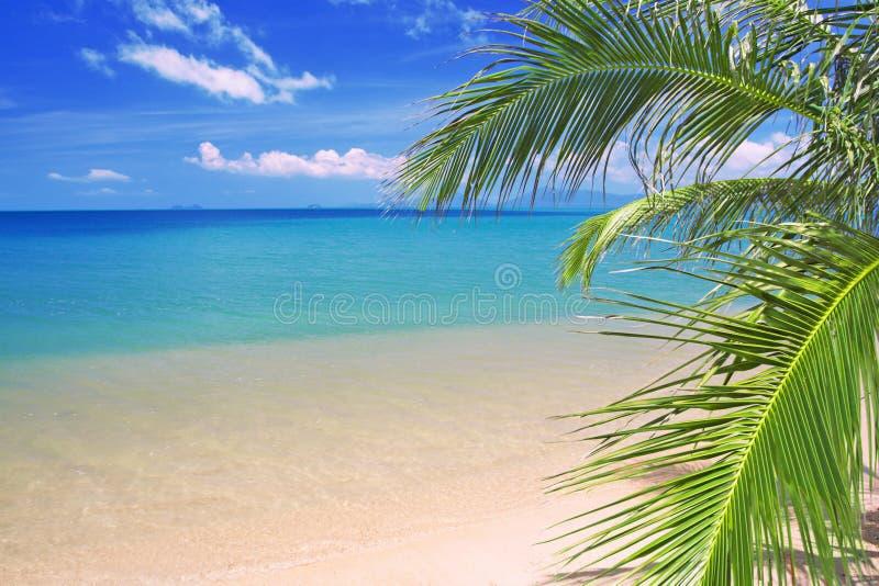 Praia e mar tropicais bonitos foto de stock
