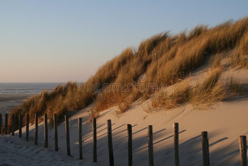 A praia e o mar em Terschelling, Países Baixos fotos de stock