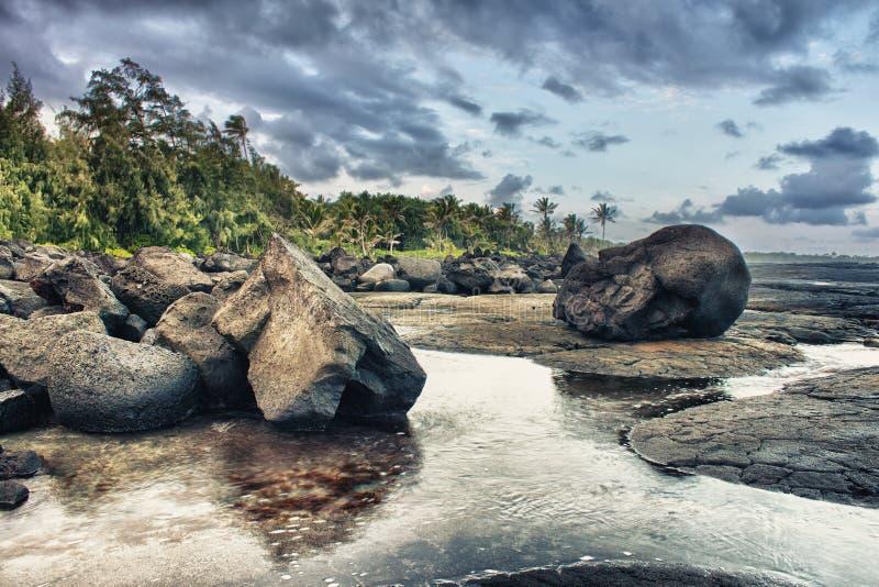 Praia e palmeiras tropicais da lava fotografia de stock royalty free