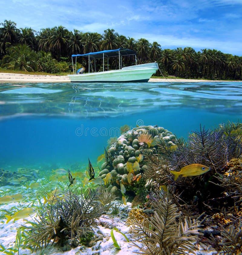 Praia e peixes tropicais fotos de stock royalty free