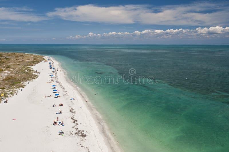 Praia e sunbathers do oceano imagem de stock