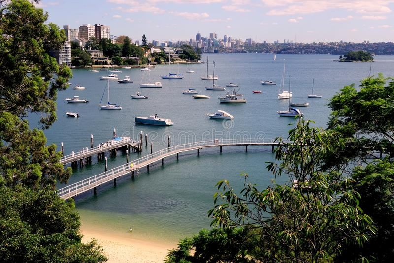 Praia e Sydney Harbour de Redleaf imagens de stock