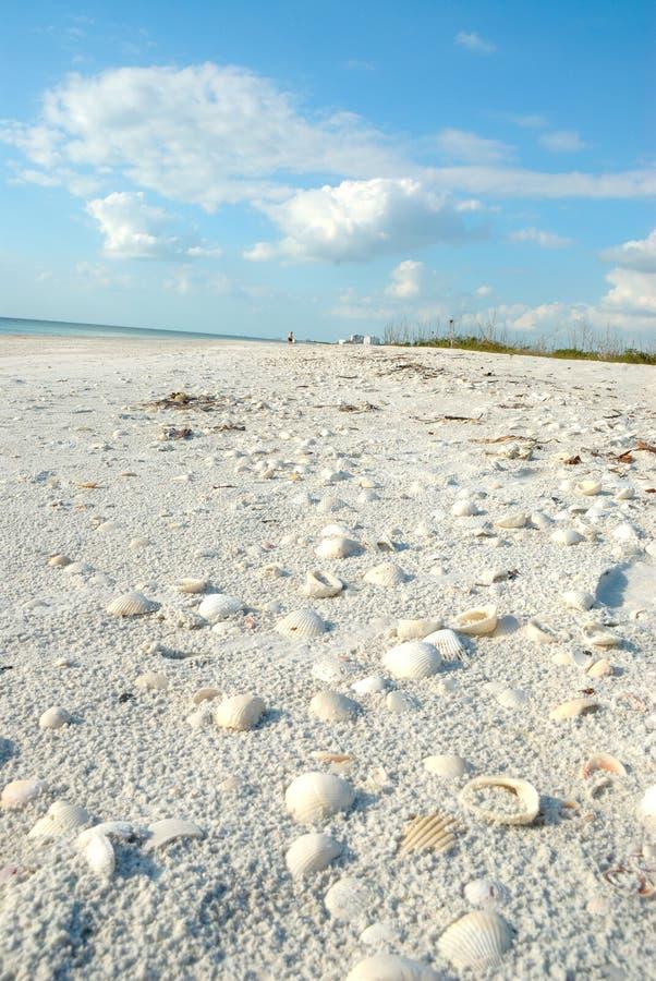 Praia em amantes Florida chave EUA fotografia de stock