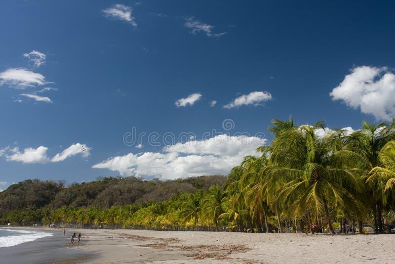 Praia em Costa-Rica fotos de stock