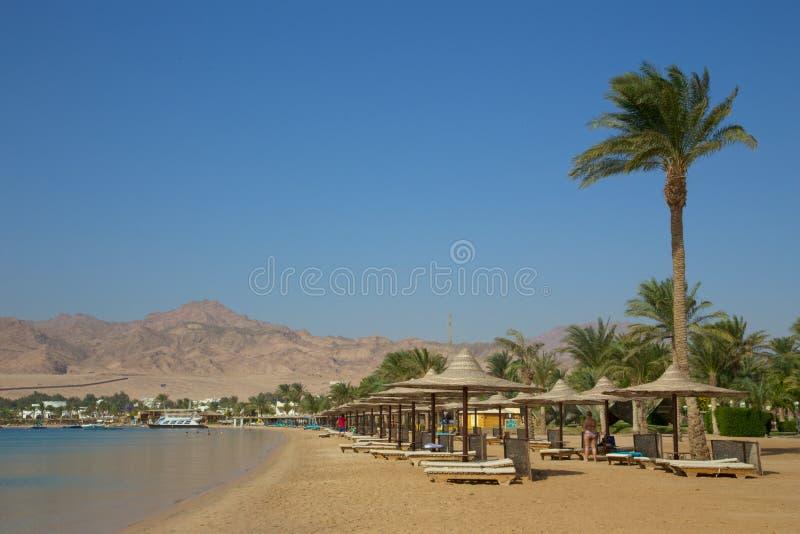 Praia em Dahab imagens de stock royalty free
