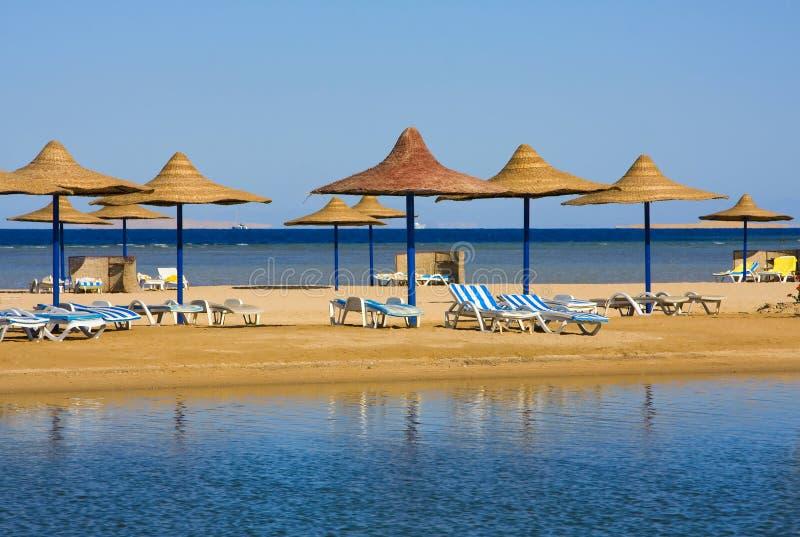Download Praia em Egipto foto de stock. Imagem de camas, lazer - 26524858