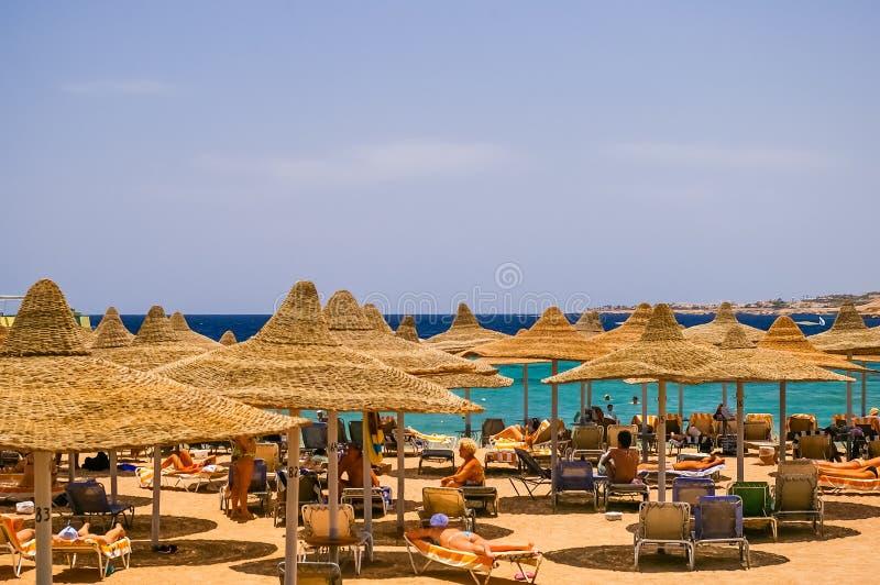 Praia em Egito, África fotografia de stock