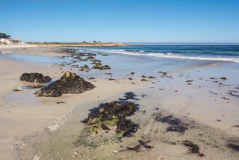 A praia em Monterey, Califórnia foto de stock