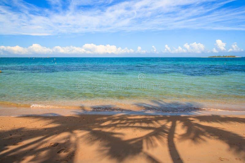 Praia em Nova Caledônia imagem de stock