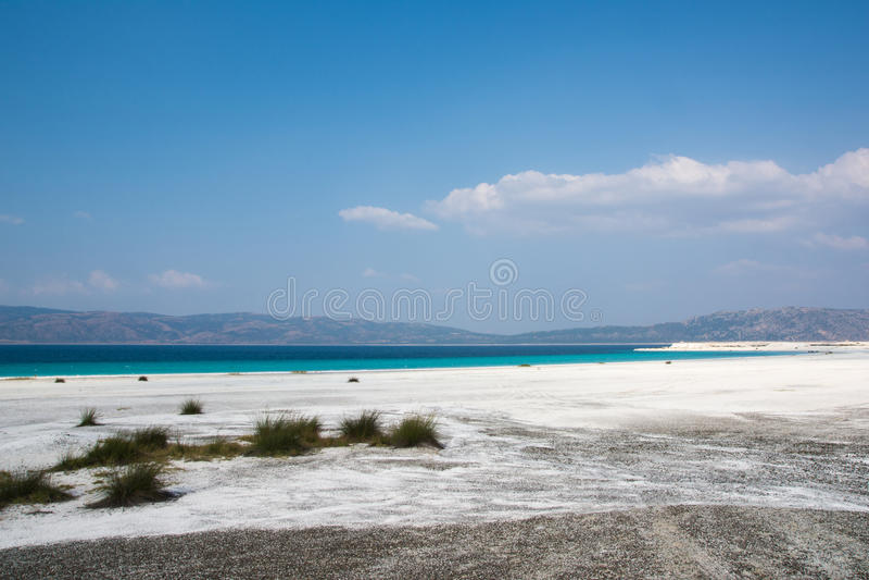 Praia em South Carolina América imagens de stock