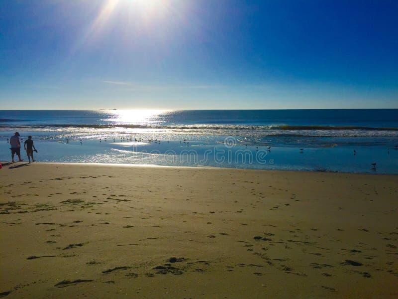 Praia ensolarada fotos de stock