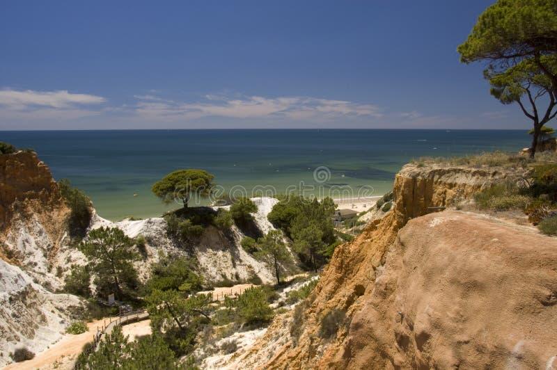 praia falesia da стоковая фотография