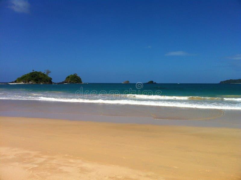 Praia gêmea e ondas altas fotos de stock