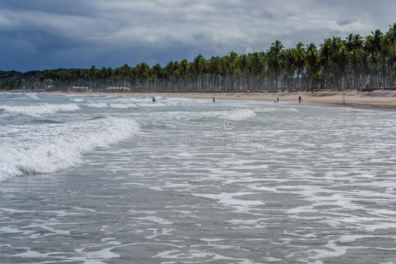 Praia gör Paiva, Pernambuco - Brasilien royaltyfri foto