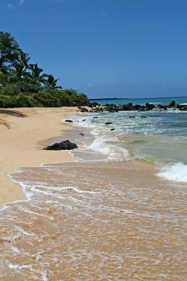 Praia grande foto de stock