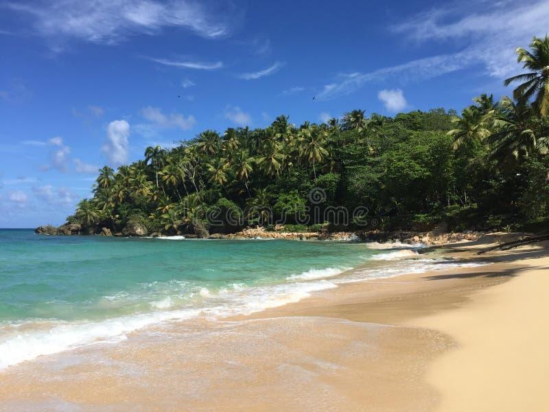 Praia ideal foto de stock