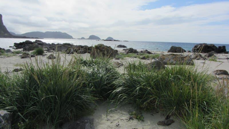 Praia Langoya, Noruega fotografia de stock royalty free