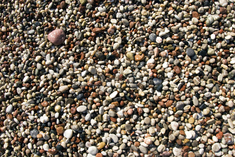 Praia Molhada Dos Seixos Foto de Stock