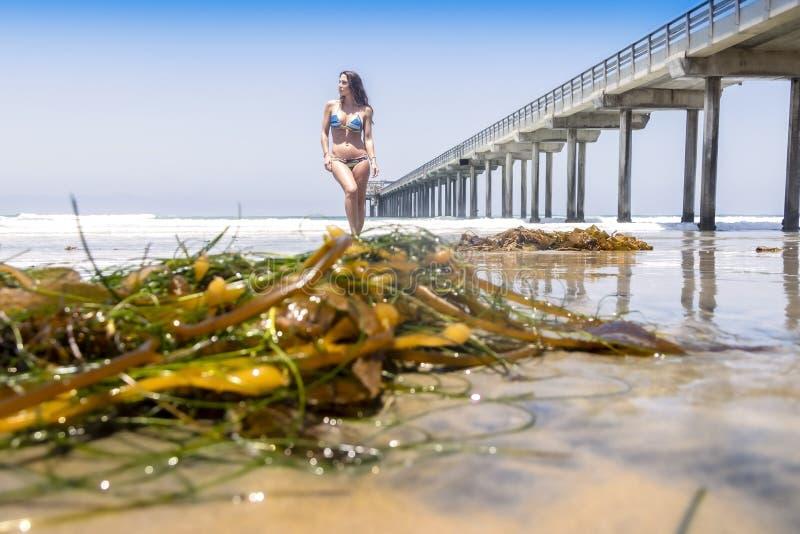 Praia moreno bonita de Posing Outdoors On A do modelo do biquini fotografia de stock royalty free