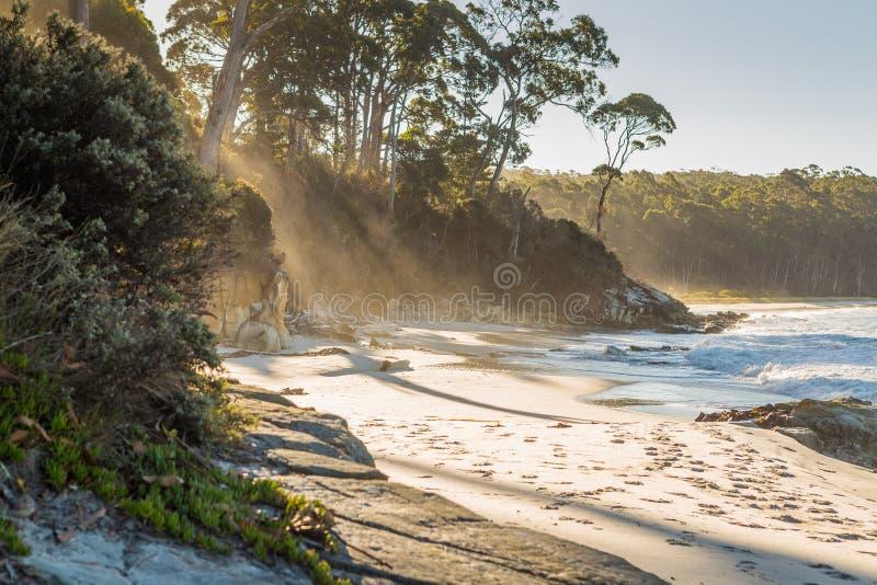A praia na angra da definição na baía da aventura, ilha de Bruny, Ta fotos de stock royalty free