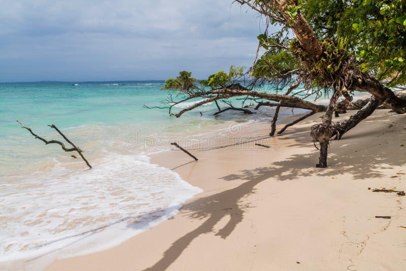 Praia na ilha de Isla Zapatilla, parte do arquipélago de Toro do del de Bocas, Pana imagens de stock royalty free