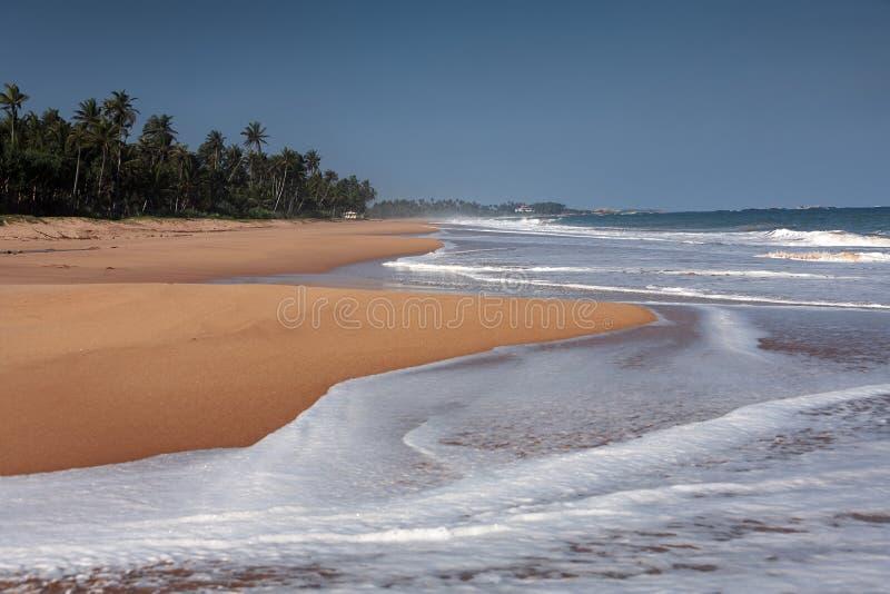 Praia na ilha de Sri Lanka fotografia de stock royalty free