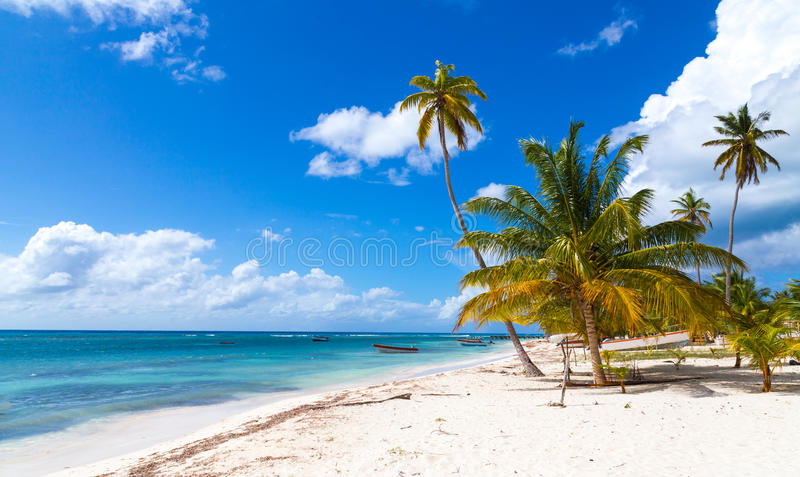 Praia na República Dominicana de Saona fotografia de stock