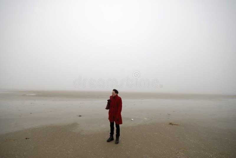 Praia nevoenta imagem de stock