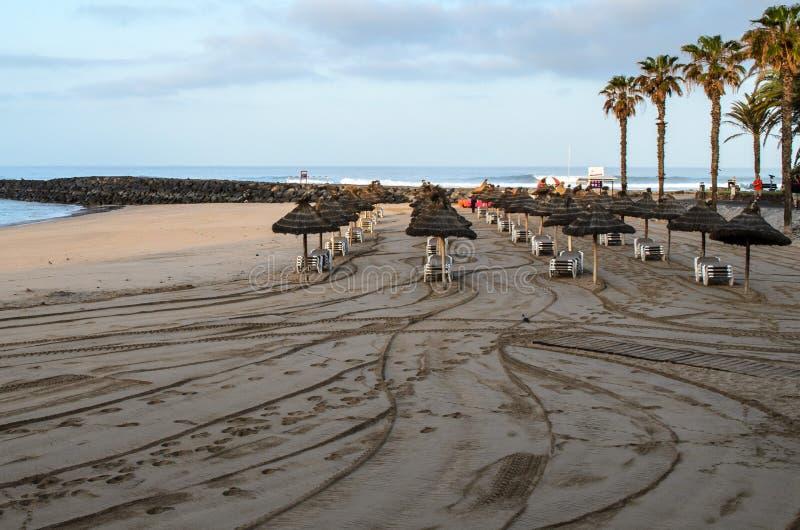 Praia no alvorecer, Tenerife do Los Cristianos, Ilhas Can?rias, Espanha imagem de stock