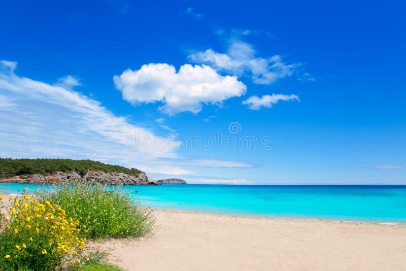 Praia no console de Ibiza com água de turquesa imagem de stock