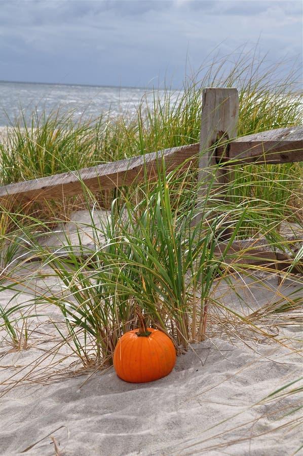 A praia no outono imagens de stock
