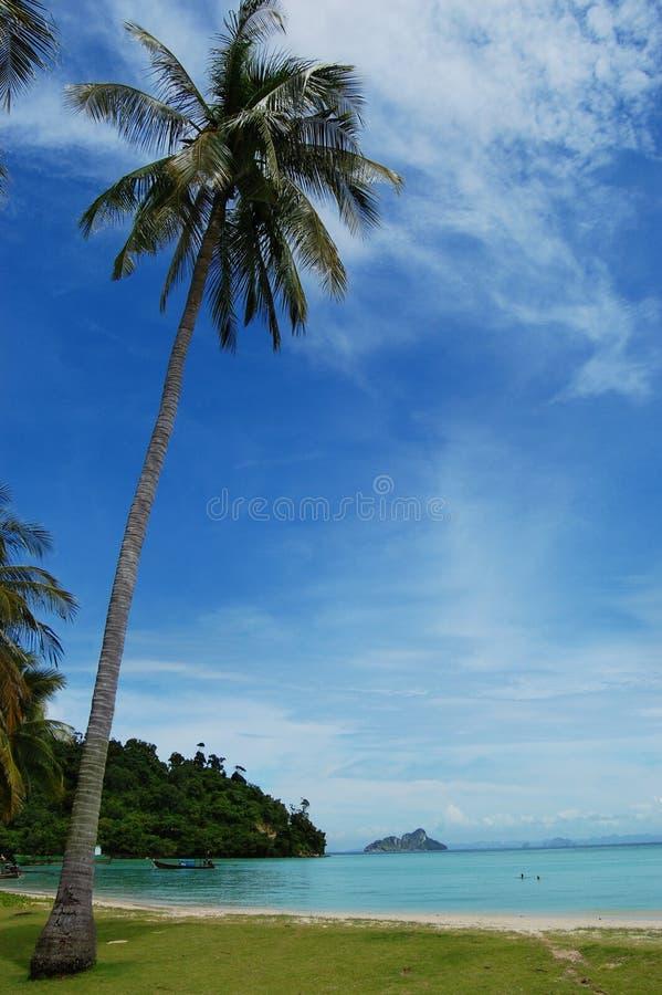 Praia no paraíso foto de stock royalty free