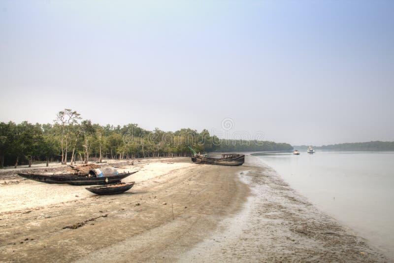 Praia no parque nacional de Sundarbans em Bangladesh imagens de stock royalty free