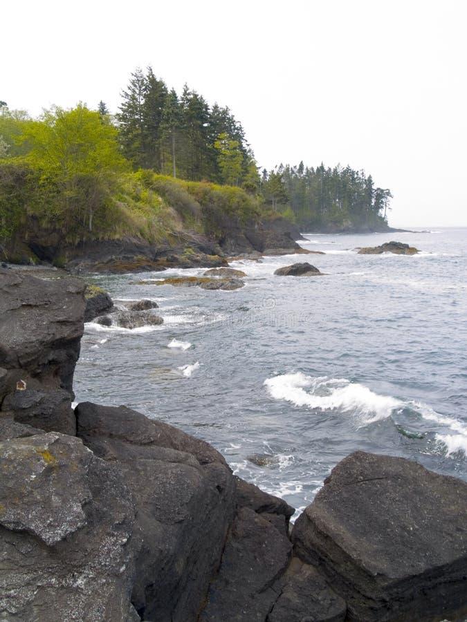 Praia noroeste pacífica fotografia de stock