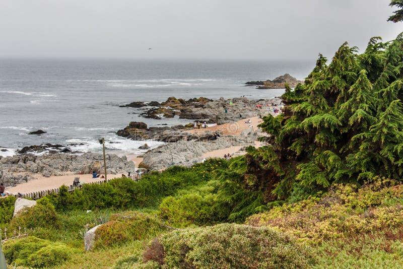 Praia o Chile de Isla Negra fotografia de stock royalty free