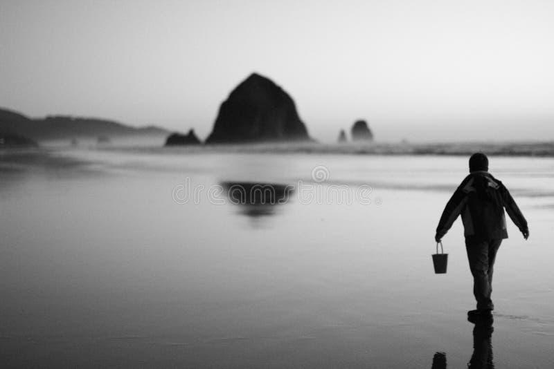 Praia Oregon do canhão fotos de stock royalty free