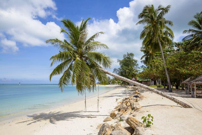 Praia, palmeira e água do mar tropicais bonitas na ilha Koh Phangan, Tailândia foto de stock royalty free