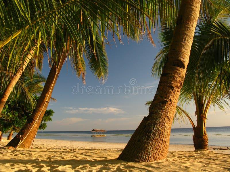 A praia perfeita apenas para você imagem de stock royalty free