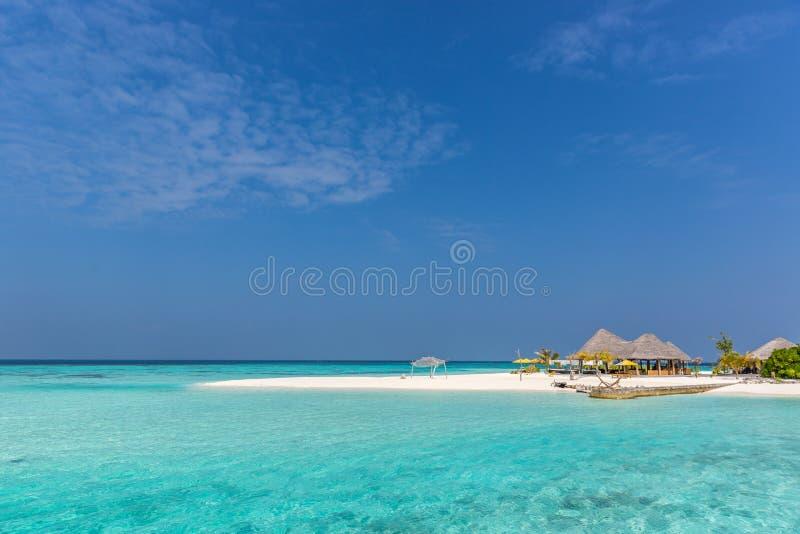 Praia perfeita, ilha surpreendente em Maldivas fotografia de stock royalty free