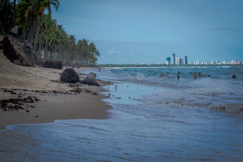 Praia robi Paiva Pernambuco, Brazylia, - zdjęcie royalty free