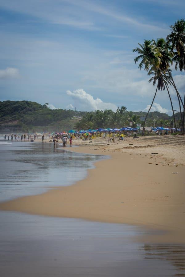 Praia robi Paiva Pernambuco, Brazylia, - obrazy stock