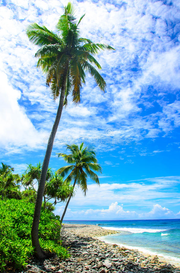 Praia rochosa fotos de stock royalty free